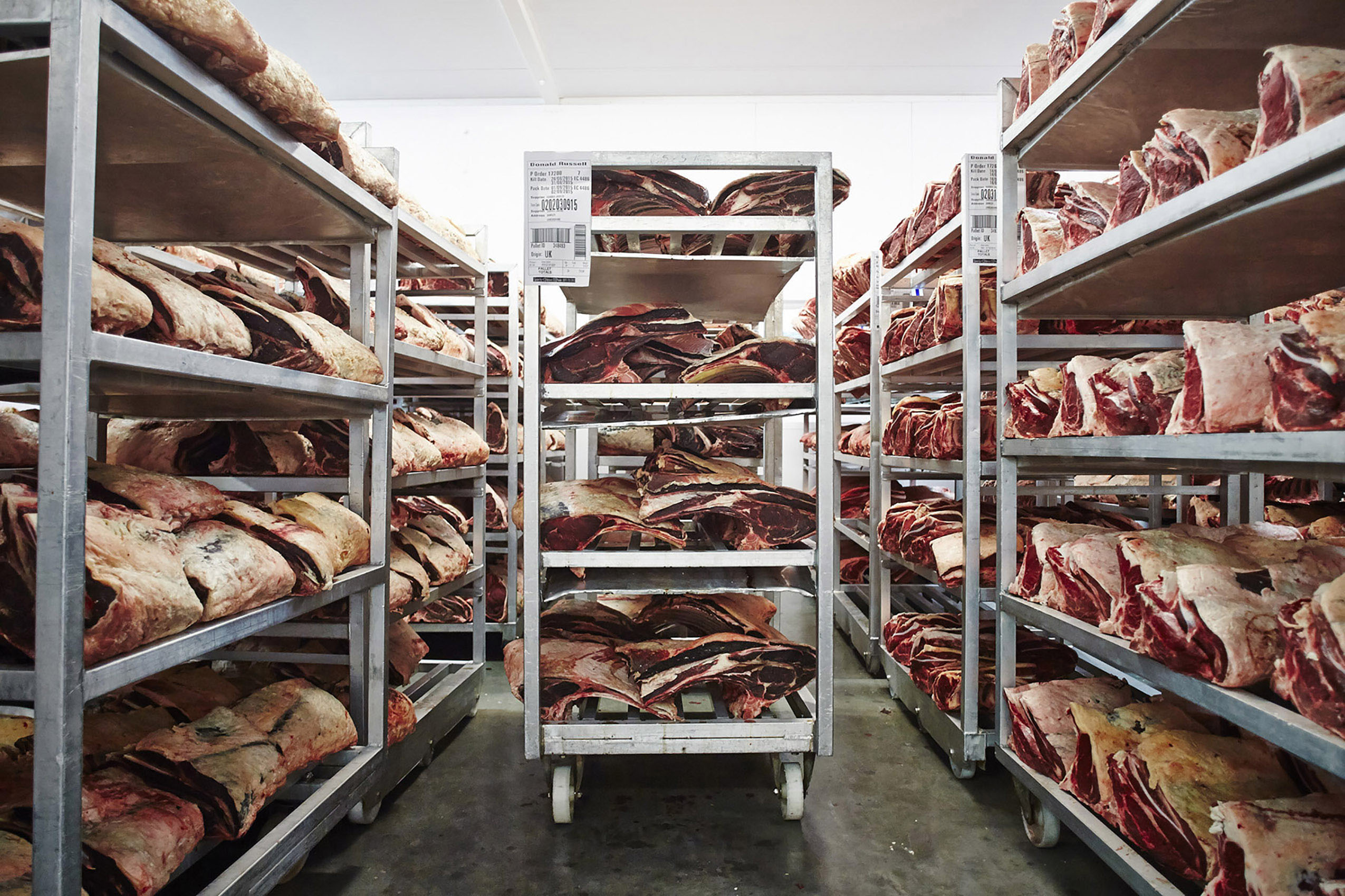 SteveRyan_Photographer_Ingredients_Produce_Meat_Butcher_DryAging_Beef_ColdRoom_22