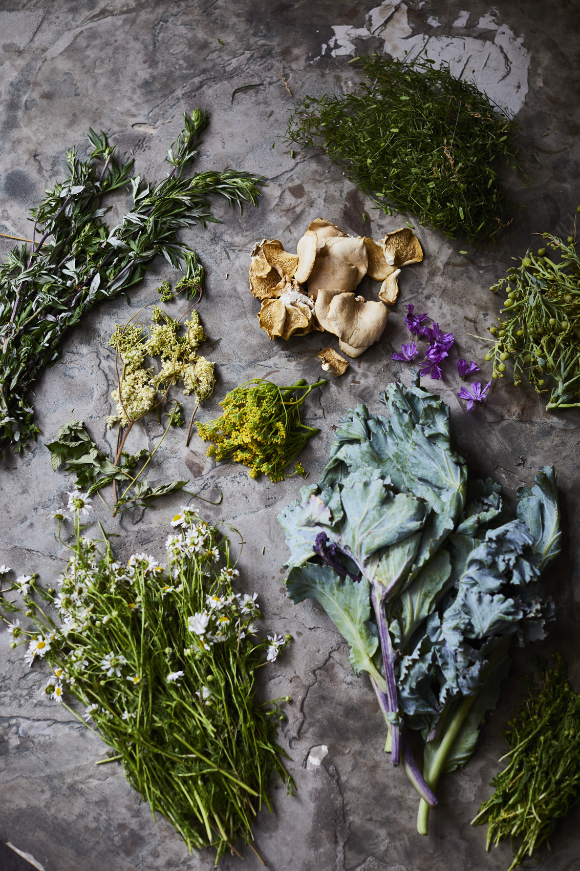 SteveRyan_Photographer_Ingredients_Produce_Vegetables_Foraged_02