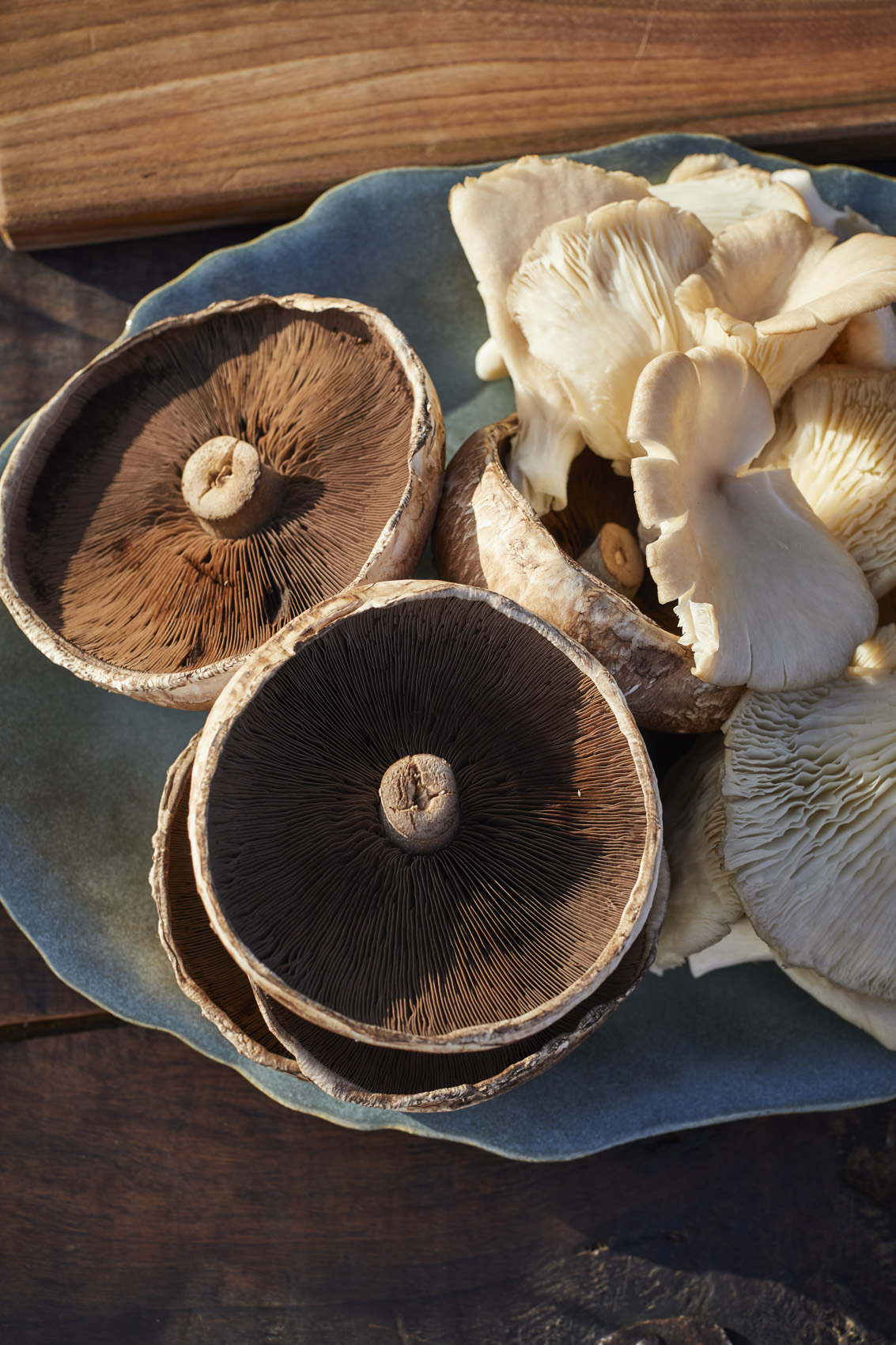 SteveRyan_Photographer_Ingredients_Produce_Vegetables_Mushrooms_03